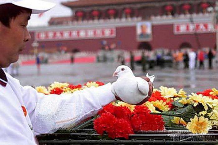 1999天安门广场国庆花坛