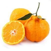 百宝源 四川蒲江 丑橘不知火 丑八怪5斤装 单果250-300g左右新鲜橘子