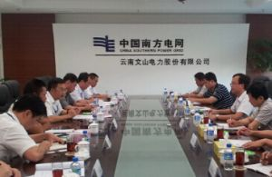云南文山电力股份有限公司