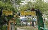 泰顺乡村学校校长林恩:香樟树下的约定