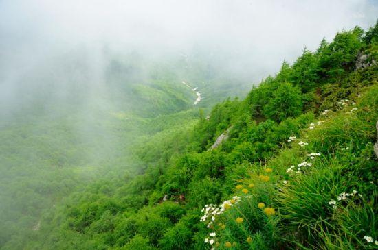 周至国家级自然保护区
