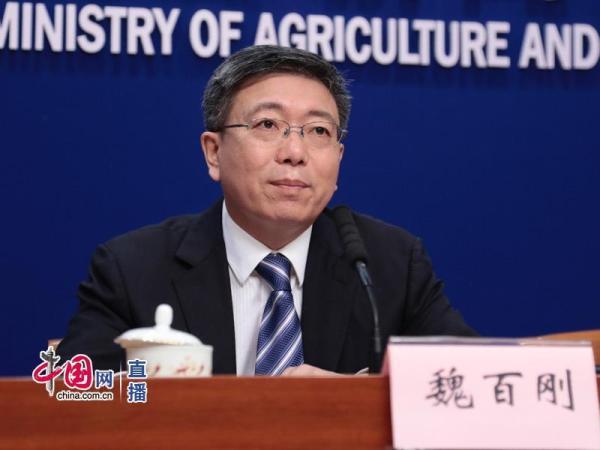农业农村部:2019年上半年农民收入增速达到6.6%