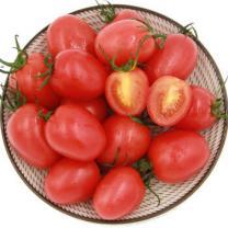 绿鲜知(greenseer)千禧番茄 约1000g 自营蔬菜