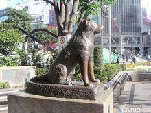 忠犬八公雕塑