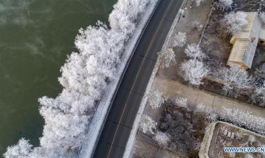 In pics: frosty trees at bank of Songhuajiang River in Jilin