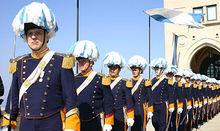圣马力诺大议会卫队
