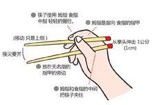 筷子的握法