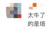 人民日报、央视新闻关注宁波:这群师生卖废品干了件大事!