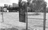 杭州已有4处公共遛犬区 但为何专门过来的市民并不多