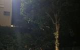 暖心!凌晨和最后一个学生道别后 杭州这位校长坐在了路灯下