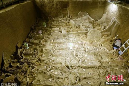 河南新郑郑韩故城遗址三号车马坑,共发现4辆马车,出土122匹马骨。