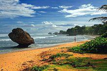 巴巴多斯海边风景